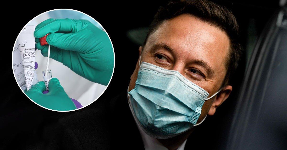 Илон Маск за один день сдал 4 теста на коронавирус, но получил разные результаты